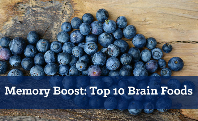 Memory Boost: Top 10 Brain Foods that Boost Your Memory and Focus