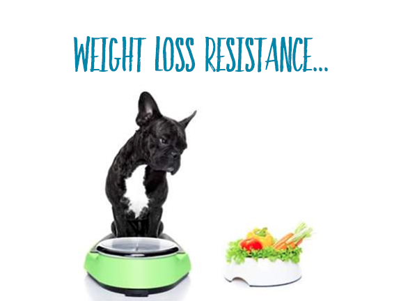 Weight Loss Resistance: The Truth Behind Extra LBS…