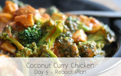 Coconut Curry Chicken & Cucumber Salad (RA) Day 4