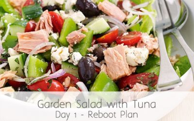 Garden Salad with Tuna (RA) Day 1
